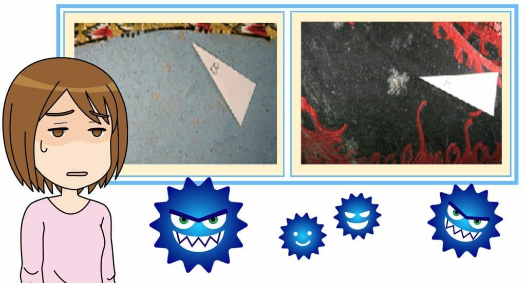 カビが布団やじゅうたんについている写真