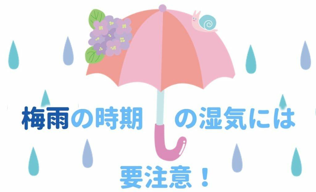 梅雨の湿気