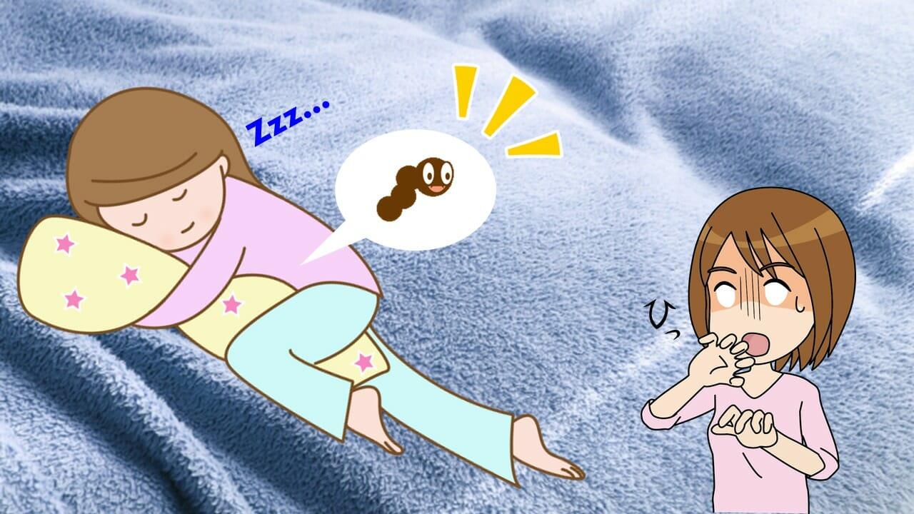 リネット 枕 クリーニング